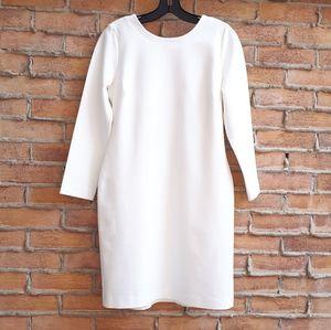 NWT Petite Winter White Ponte Dress